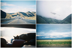 I-5 on a Joyride (*JLo) Tags: sf california cloud fog cat drive la cow kodak roadtrip olympus cody portra 5freeway chesnutt andthecowgoesmoo