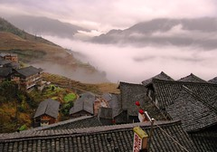 Dragon Terraced Rice Fields