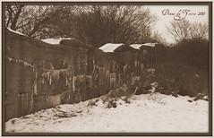 oorlogswinter (view photo for more info about the tankwal) (Donna Da Yettta - @work & study) Tags: park winter snow wall forest war tank sneeuw atlantic pan van katwijk bos parc oorlog panbos atlanticwall altantic persijn panvanpersijn atlantictankwall