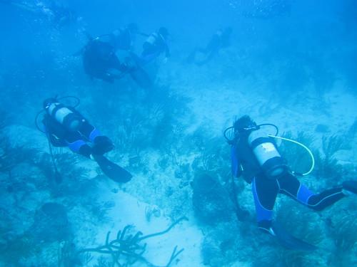 Los mejores 5 sitios de buceo en Cuba