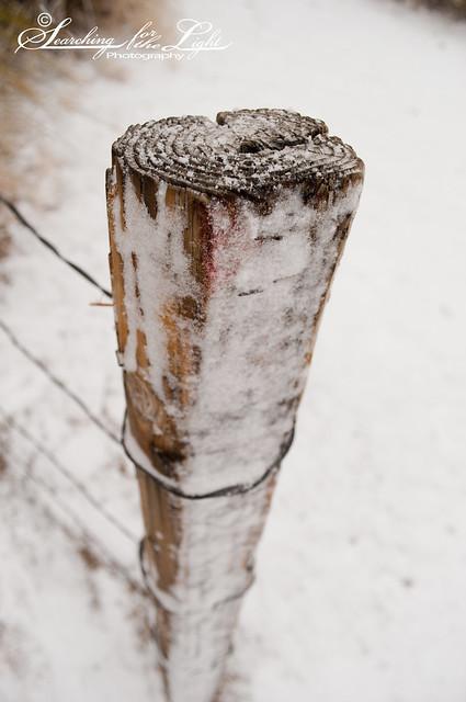 SNOW12-30-10_18
