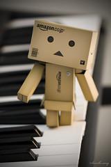 Making Music (Brooke Cary) Tags: keyboard piano danbo danboard
