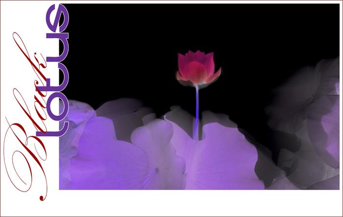 Black Lotus - BlackLotus-42-0700