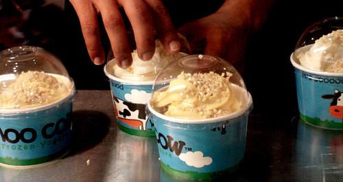 moo cow frozen yogurt (2)