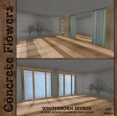 CONCRETE FLOWERS- WINTERBORN SKYBOX PIC (.KOSH.) Tags: winter free concreteflowers huntprize theseasonshunt