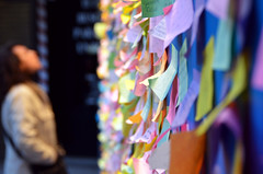wall of wishes (xavi talleda) Tags: woman blur muro colors wall mujer nikon colorful dof post notes bokeh pov couleurs leer postit colores read note papers wishes notas write wish deseo nota papeles colorido escritura escribir deseos d7000 talleda xavitalleda