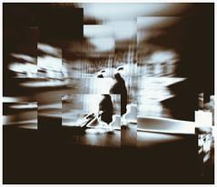 La passante 2 #Iphonography (Magikphil) Tags: camera portrait urban art home apple contrast portraits studio square sens photo mac europe exposure shoot photographie suisse image noiretblanc hiver compo danse nb ombre lausanne reflet jura silence styles shooting format orbe fx passage paysage amateur janvier ouchy ville yverdon ch pensee baulmes magie passant urbain vd iphone vaud orge renens 2011 yvonand twitter lumiere iphone4 sensualite orges vuiteboeuf iphonography phonographer iphoneography iphonographer iphonographie iphoneographie phonographie magicphil magikphil decim8 phoneographer phoneographie montesphilippe magicphilch