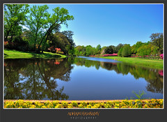 Bellingrath Gardens, Alabama (ADHAM HAWRAMY) Tags: flowers trees usa lake reflection green nature water grass mobile gardens landscapes nikon ngc alabama wideangle southeast ponds  theodore   gulfcoast  clearskies naturesfinest d90 bellingrathgardens     fantasticnature  flickraward 18200mmnikkor    wonderfulworldofflowers nikonflickraward