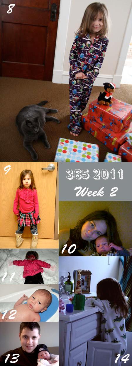 365 2011 Week 2