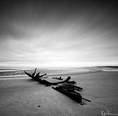 Ribs (David Hannah) Tags: white black seaweed texture abandoned beach mono scotland boat oak sand long exposure ship tide low run ribs ripples hull hulk aground sunk wreck seashore 40d coastuk welcomeuk