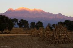 Iztaccihuatl (Ana Eversbusch) Tags: sunset landscape mexico atardecer volcano paisaje campo volkan volcn iztaccihuatl milpa mujerdormida volcanesdemxico anaeversbusch ayapangoestadodemxico mexicanvolcanos