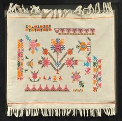 Embroidery Hidalgo Mexico (Teyacapan) Tags: mexico embroidery sewing artesanias mexican museo textiles hidalgo bordados nahua santacatarinaacaxochitlan