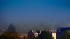 brouillard matinal (Yasmine Hens) Tags: brouillard hensyasmine namur belgium wallonie europa aaa belgi belgia belgien  belgique blgica   belgie  belgio    bel be saariysqualitypictures