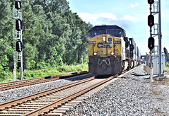 CSX Q124 at Richland on its way to Chicago in 2016 (TPavluvcik) Tags: pascocountyflorida zephyrhills ac44cw richland dadecity