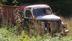 1940's REO Speed Wagon Truck (Larry Myhre) Tags: reo speedwagon truck rusty abandoned vintage kaslo britishcolumbia bcalbertasept2016