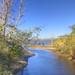 Daphne Bayside Park - Marsh and Swamp