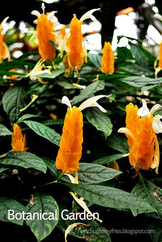 botanical-garden-(1)
