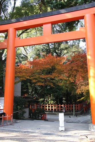 晩秋の鳥居 / Beautiful torii
