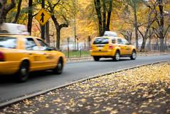 Yellow Drive (sohiroshi) Tags: leica city nyc newyork fall 50mm bokeh centralpark manhattan taxi cosina voigtlander 11 m8 nokton voigtlnder cv
