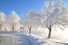Oh, I belive in yesterday! (Grey travel) Tags: road street city trees winter lake snow water norway frost telemark bluewhite gettyimages notodden wtmwchallengewinner