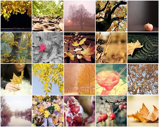 15 otoños y 2 veranos