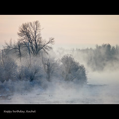 : ) (annkelliott) Tags: trees mist canada cold calgary beautiful horizontal landscape lumix scenery december ducks alberta pointandshoot vapour bowriver winterscene beautyinnature southernalberta allrightsreserved beautifulexpression annkelliott carburnpark fz35 dmcfz35 panasonicdmcfz35 anneelliott2010 p1240060fz35