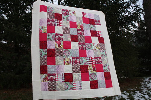 Pomegranate Parisville Quilt Top