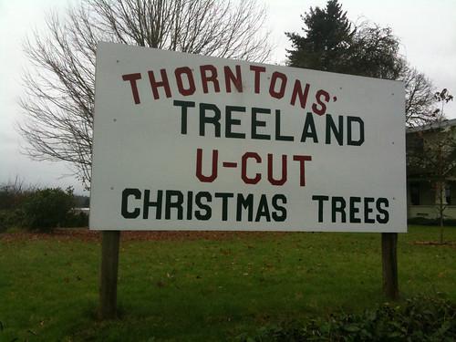 Thorntons Treeland