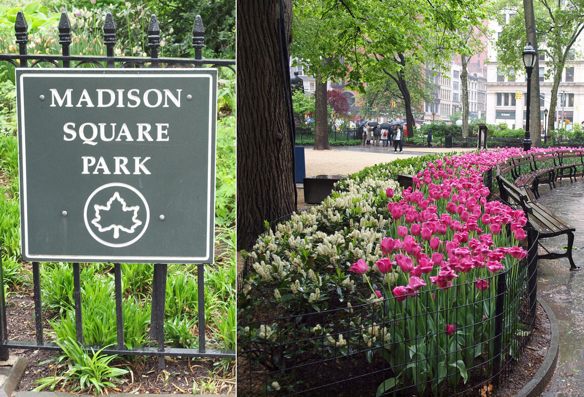 11 Madison - Madison Square Park