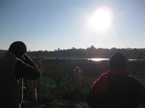 Photographers wait for Whooping Cranes in Saint Marks