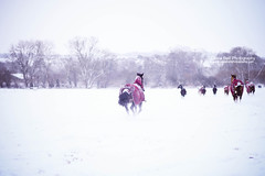 In a hurry... (explore) (Olivia L'Estrange-Bell) Tags: winter horses oliviabell oliviabellphotography tbsart
