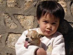 Nini and Xingping Boy (Hanumann) Tags: china dog chihuahua xingping
