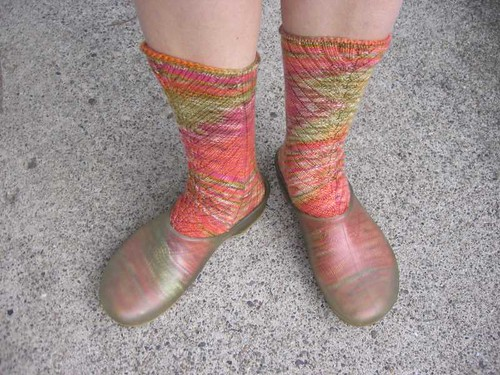 Gaudete socks