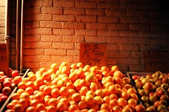 .. (Js) Tags: red toronto brick wall fruit night evening minolta kodak stall apples 100 oranges himatic hue prices broadview ektar 7s chinatowneast