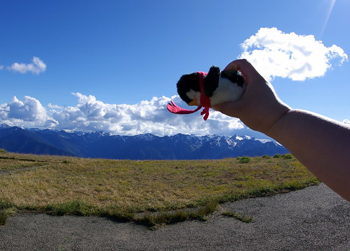 2010-08-28 Hurricane Ridge (85)