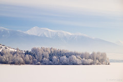 Winter Symmetry in the Cold Morning ~ Liptov, Slovakia (Martin Sojka .. www.VisualEscap.es) Tags: morning blue winter sky lake snow ice nature colors landscape frozen olympus slovensko slovakia zuiko e5 liptov 1260 zd liptovskamara 1260mm