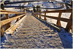 Stairy, stairy night (Stella Blu) Tags: stella winter snow canada game cold stair edmonton blu steps pre alberta winner lookingdown gamewinner madeofwood nikkor18200 stepsstairs 15challengeswinner thechallengefactory eziofaronepark nikond5000 pregamesweepwinner goingdownstaris
