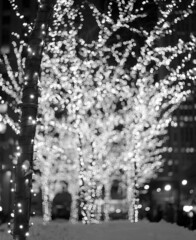 NYC 12/28/10 (Jason Arends) Tags: christmas nyc newyorkcity winter blackandwhite snow 120 mamiya film night mediumformat lights bokeh manhattan delta 3200 ilford rb67 ddx ilforddelta ilfordilfotecddx film:brand=ilford film:iso=3200 developer:brand=ilford film:name=ilforddelta3200 developer:name=ilfordilfotecddx filmdev:recipe=6261