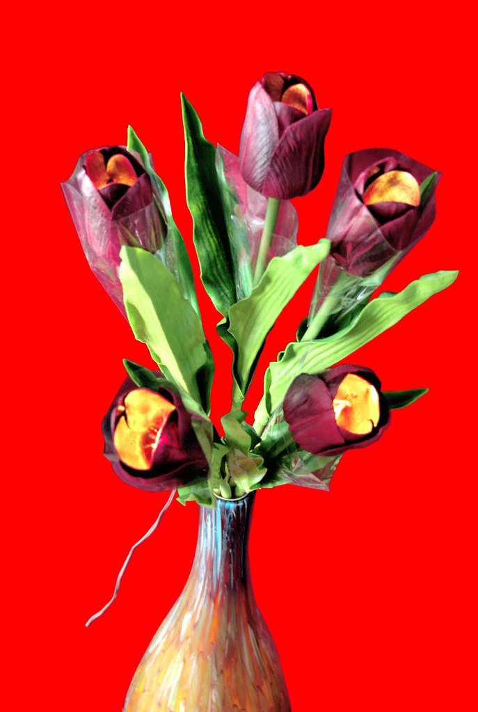 Red Tulip light bouquet of 5