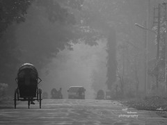 Winter Morning (Asif Adnan Shajal) Tags: road morning winter bangladesh wintermorning savarbangladesh jahangirnagoruniversity framebangladesh asifadnanshajal asifadnanshajalphotography