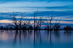 _MG_9303 (Wai Cheong Chan) Tags: pamamaroo lake sunset longexposure menindee andychan andy wai cheong chan