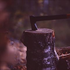 04 (myyra_ug) Tags: wood autumn fish fall suomi finland traditional knife smoking axe kala vendace syksy smoked varkaus muikku savo kalakukko savustus savustettu savustuspntt savukala coregonusalbula savustaminen