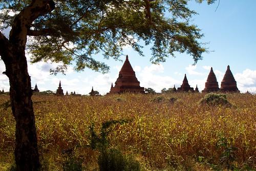 Bagan_2163b5