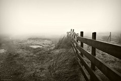 (andrewlee1967) Tags: moors saddleworth fence grass canon50d sigma18200mm andrewlee1967 uk gb england britain fog mist wet damp lancashire saddleworthmoor andrewlee