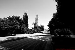 La mosque Koutoubia (l'apple-cafe) Tags: nikon islam maroc atlas marrakech hdr highdynamicrange koutoubia afrique mosque musulman d90 djemaelfna nikond90 mo