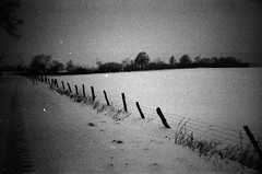 '63 winter pop (Der Ohlsen) Tags: schnee winter bw snow film analog 35mm germany deutschland expired kb schleswigholstein kodakplusxpan ccpp chupachupsphotopop autaut