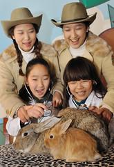 자이언트 토끼 체험스쿨 (에버랜드 (withEverland)) Tags: animal everland 한국 에버랜드 토끼 테마파크 놀이공원