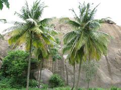 20090727_G9_IMG_2956 (Gogolcat) Tags: india climbing ramanagaram