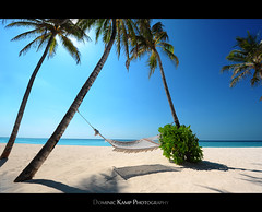 Good Morning, Sunshine! (Dominic Kamp) Tags: life sun white beach palms island this sand nikon relaxing like can palm resort want dont hammock soul rah senses maldives ultra stay dominic kamp reethi i toleave d700 1424mm