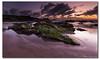Sunrise that Steals Your Breath (danishpm) Tags: ocean green beach clouds sunrise canon sand rocks australia nsw mauve aussie aus manfrotto eos450d hastingspoint 450d tweedshire sorenmartensen hitechgradfilters 09ndreversegrad